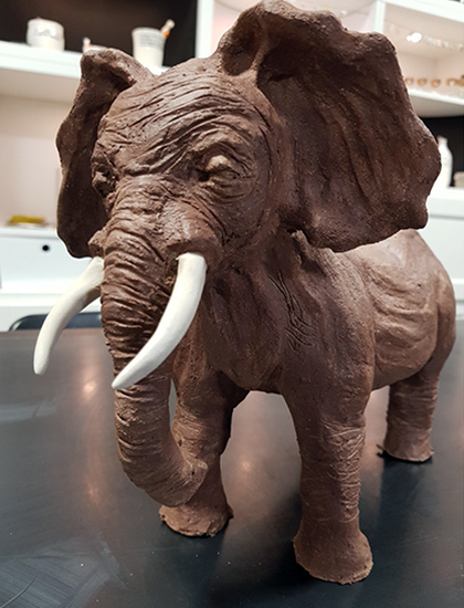 Terre Ceramica e Arte - Lavori degli allievi - Elefante